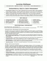 Ehs Resume Examples