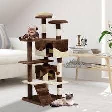 jeu chat accessoires neufs et d occasion pour animaux de