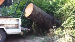 Lewis Winch Lifts Massive Log Into Truck, Most POWERFUL Portable ...
