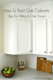White Paint For Kitchen Cabinets – Guarinistore