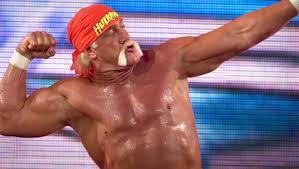 Halloween Havoc 1997 Hogan Fan by Hulk Hogan U2013 Online World Of Wrestling