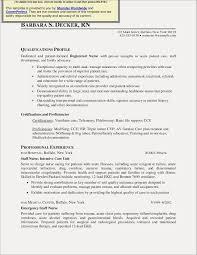 Resume Profile Examples Chemistry Best Fresh Good Nursing