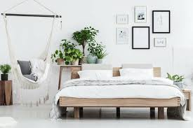 pflanzen im schlafzimmer diese sorten eignen sich