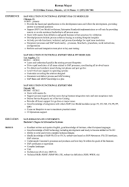SAP Expert Resume Samples | Velvet Jobs Executive Resume Examples Writing Tips Ceo Cio Cto College Cover Letter Example Template Sample Of For Resume Experience Sample Caknekaptbandco A With No Work Experience Awesome Project Manager Full Guide 12 Word Cv The Best Samples For 2019 Studentjob Uk Free Professional And Customer Service Receptionist Monstercom Document Examples High School Students Little Management