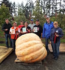 Largest Pumpkin Ever Weight by Our Blog Christianson U0027s Nursery