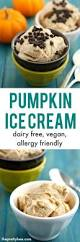 Mccormick Pumpkin Pie Spice Nutrition Facts by Pumpkin Ice Cream Dairy Free And Vegan The Pretty Bee
