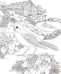 Download Coloring Pages Garden Flower To And Print For