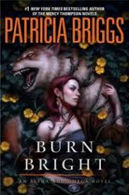Book Cover Image For Burn Bright