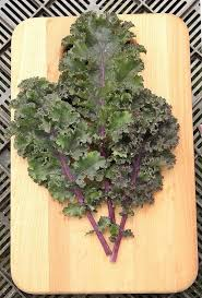 Curly Roja Kale Organic