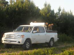 100 Hunting Trucks Rig Picturestrucks 4wheelers Etc Page 3