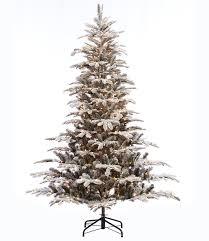 75 Flocked Slim Christmas Tree by The Holiday Aisle Pre Lit Aspen Flocked 7 5 U0027 Green Fir Artificial