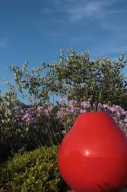 le patio des artistes cannes photo0 jpg photo de best western plus le patio des artistes