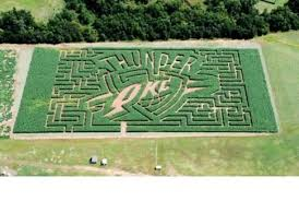 Pumpkin Patches In Okc by Mikles Family Farm In Shawnee Oklahoma Offers Old Fashioned
