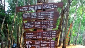Hutan Pinus Mangunan 2JogJaCom