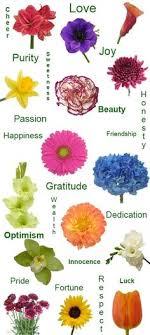 10 Best Funeral Flowers