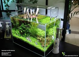 182 best Aquarium images on Pinterest
