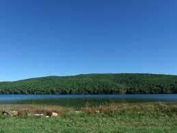 Laurel Bed Lake by These 16 Amazing Spots In Virginia Are To Go Fishing