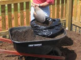 How To Grow Potatoes In A Trash Bag | How-tos | DIY Texas Garden The Fervent Gardener How Many Potatoes Per Plant Having A Good Harvest Dec 2017 To Grow Your Own Backyard 17 Best Images About Big Green Egg On Pinterest Pork Grilled Red Party Tuned Up Want Organic In Just 35 Vegan Mashed Potatoes Triple Mash Mashed Pumpkin Cinnamon Bacon Sweet Gardening Seminole Pumpkins And Sweet From My Backyard Potato Salad Recipe Taste Of Home