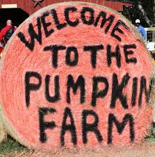 Celina Pumpkin Patch Directions by 10 Best My Pictures Images On Pinterest Hay Bales Scarecrows