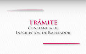 Instituto Nacional De Metrología Organigrama