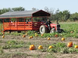 Carmichaels Pumpkin Patch Oklahoma by Oklahoma Agritourism Oklahoma U0027s Growing Adventure