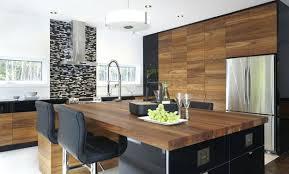 armoire de cuisine stratifié gorge armoires de cuisine en stratifie modernes idees peinture