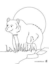 Hibernating Animals Coloring Pages Home