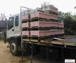 Project Pink – Women In Beekeeping | Honey Delight Moving Bees Is Not Easy Slide Ridge Bee Notes Best Way To Become A Truck Driver Image Kusaboshicom Fueldoor Rumblebee3930 2004 Dodge Ram Rumble Bee 57 Hemi Dead Touring Country To Underscore Bee Declines Offramp Blocked By Overturned Truck Krcr 140815_204506162_ios The Fast Lane 2013 Ram 1500 Rumble Concept Rear Hd Wallpaper 9 Project Pink Women In Bkeeping Honey Delight Beeman Stans Removal Dade City Ill Take A Sting For You 2 Racing Stripe Boxing Vinyl Stickers Decals For