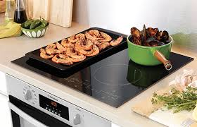 induction cuisine commercial induction cookers for the professional or home kitchen