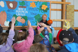 Dollingers Pumpkin Farm Minooka Il by Family Pumpkin Farms In Grundy County Area Educate Youth On
