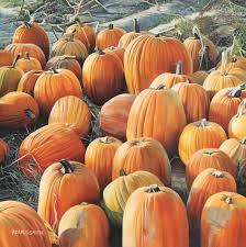 Pumpkin Patch In Long Island New York by Pumpkin Patch Spoton Art Gallery