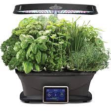 Small Home Garden Ideas