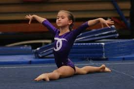 Usag Level 4 Floor Routine 2015 by Youth Roundup Diamonds Shine At Level 4 State Championships