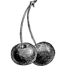 Cherry black and white clipart