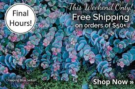 free shipping coupon michigan bulb printable coupons butterfly world