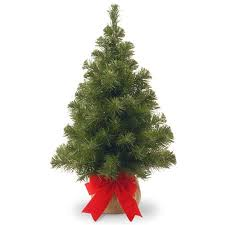 National Tree NB1 20BP 1 2 Ft Noble Spruce With Burlap Bag