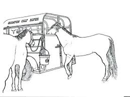 Realistic Horse Coloring Pages For Adults Jumping