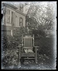 Tabby Cat With Unusual Markings In A Rocking Chair | Flickr