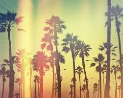 1280x1024px California Tumblr Wallpaper