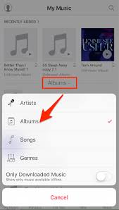 3 Ways to Delete Music Albums from iPhone 6 6S SE