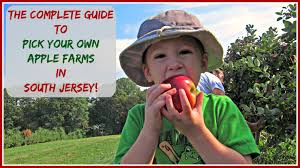 Pumpkin Picking South Nj by The Complete Guide To Pick Your Own Apple Farms In South Jersey