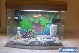 aquarium poisson prix aquarium de poisson 3ème génération décoration sfax sfax