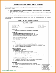 Sample Objectives In Resume For Ojt Business Administration Student New Accounting Students At
