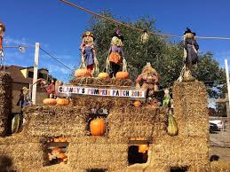 Pumpkin Patch Near Bay Area by The Best Pumpkin Patches And Corn Mazes In The Bay Area