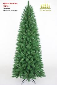Donner And Blitzen Christmas Trees by Pine Christmas Tree Biltmore Pine Artificial Christmas Tree