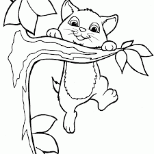 Cat Coloring Pages And Kitten Page