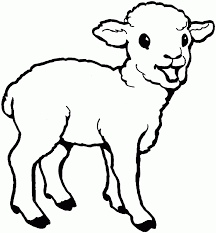 Lamb Coloring Pages For Kids Animal