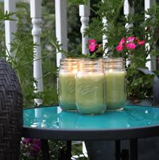 Homemade Backyard Mosquito Repellent | Home Outdoor Decoration Mosquitoproofing Your Garden French Gardener Dishes Mosquito Control Backyard Ponds Home Outdoor Decoration How To Reclaim Yard From Mosquitoes Wisconsin Mommy Mosquitoproof 0501171 Youtube Natural Proof This Year Image 59 Best Images About Dreaming Living On Pinterest 9 Ways Mosquitoproof For Summer Drainage Medium Tips Hgtvs Decorating Design Blog Hgtv