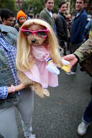 Tompkins Square Park Halloween Dog Parade 2016 by Guide To Nyc S Halloween Parade In 2017 What To Know About The