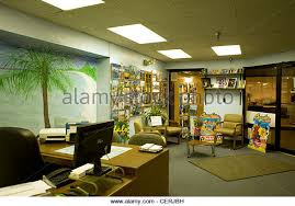 Interior Of A Travel Agency Office In Pittsfield MA Has Hand Painted Tropical Scene